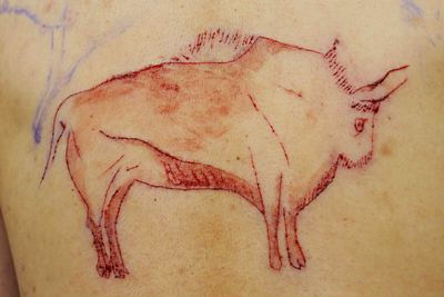 古代野牛.jpg